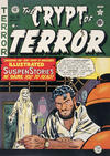 Cover for The Crypt of Terror (EC, 1950 series) #19