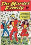 Cover for The Marvel Family (Fawcett, 1945 series) #29
