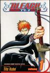 Cover for Bleach (Viz, 2004 series) #1