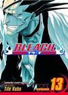 Cover for Bleach (Viz, 2004 series) #13