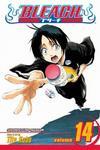 Cover for Bleach (Viz, 2004 series) #14