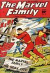 Cover for The Marvel Family (Fawcett, 1945 series) #45