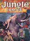 Cover for Jungle Comics (Fiction House, 1940 series) #2