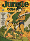 Cover for Jungle Comics (Fiction House, 1940 series) #13