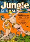 Cover for Jungle Comics (Fiction House, 1940 series) #24