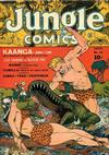 Cover for Jungle Comics (Fiction House, 1940 series) #33