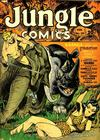 Cover for Jungle Comics (Fiction House, 1940 series) #38