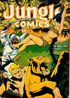 Cover for Jungle Comics (Fiction House, 1940 series) #43