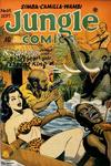 Cover for Jungle Comics (Fiction House, 1940 series) #69