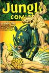 Cover for Jungle Comics (Fiction House, 1940 series) #91