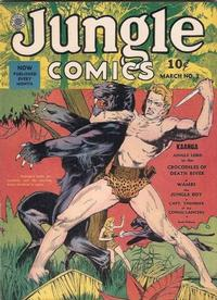Cover Thumbnail for Jungle Comics (Fiction House, 1940 series) #3
