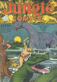 Cover Thumbnail for Jungle Comics (Fiction House, 1940 series) #11