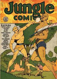 Cover Thumbnail for Jungle Comics (Fiction House, 1940 series) #13