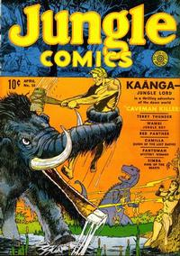 Cover Thumbnail for Jungle Comics (Fiction House, 1940 series) #16