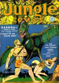 Cover Thumbnail for Jungle Comics (Fiction House, 1940 series) #17