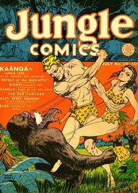 Cover Thumbnail for Jungle Comics (Fiction House, 1940 series) #19