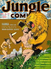 Cover Thumbnail for Jungle Comics (Fiction House, 1940 series) #23