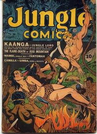 Cover Thumbnail for Jungle Comics (Fiction House, 1940 series) #36