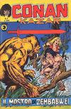 Cover for Conan e Kazar (Editoriale Corno, 1975 series) #2