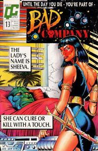 Cover Thumbnail for Bad Company (Fleetway/Quality, 1988 series) #13