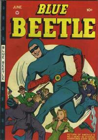 Cover Thumbnail for Blue Beetle (Fox, 1940 series) #45