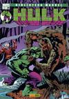 Cover for Biblioteca Marvel: Hulk (Panini España, 2005 series) #24