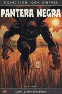 Cover Thumbnail for 100% Marvel: Pantera Negra (Panini España, 2005 series) #[nn]