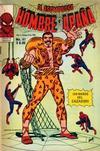 Cover for El Asombroso Hombre Araña (Novedades, 1980 series) #41