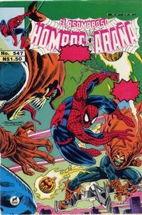 Cover Thumbnail for El Asombroso Hombre Araña (Novedades, 1980 series) #547