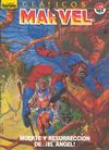 Cover for Clásicos Marvel (Planeta DeAgostini, 1988 series) #23