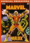 Cover for Clásicos Marvel Especial (Planeta DeAgostini, 1989 series) #[4]