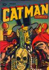Cover for Cat-Man Comics (Temerson / Helnit / Continental, 1941 series) #28