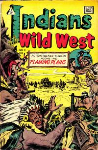 Cover Thumbnail for Indians of the Wild West (I. W. Publishing; Super Comics, 1958 series) #9