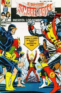 Cover Thumbnail for El Asombroso Hombre Araña Presenta (Novedades, 1988 series) #47