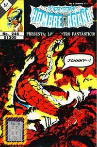 Cover Thumbnail for El Asombroso Hombre Araña Presenta (Novedades, 1988 series) #246