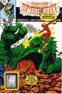 Cover Thumbnail for El Asombroso Hombre Araña Presenta (Novedades, 1988 series) #248