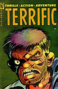 Cover Thumbnail for Terrific (Comic Media, 1954 series) #14
