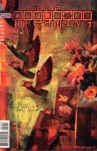 Cover for The Dreaming (DC, 1996 series) #12