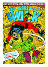 Cover for Hulk Weekly (Marvel UK, 1980 series) #63