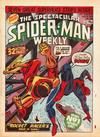 Cover for The Spectacular Spider-Man Weekly (Marvel UK, 1979 series) #338