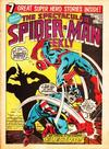 Cover for The Spectacular Spider-Man Weekly (Marvel UK, 1979 series) #343