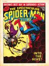 Cover for The Spectacular Spider-Man Weekly (Marvel UK, 1979 series) #363