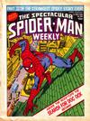 Cover for The Spectacular Spider-Man Weekly (Marvel UK, 1979 series) #366
