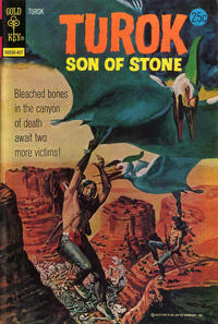 Cover Thumbnail for Turok, Son of Stone (Western, 1962 series) #91 [Gold Key]