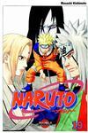 Cover for Naruto (Bonnier Carlsen, 2006 series) #19