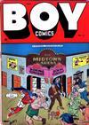 Cover for Boy Comics (Lev Gleason, 1942 series) #21