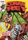 Cover for Conan Rey (Planeta DeAgostini, 1984 series) #14