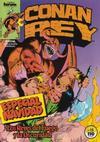 Cover for Conan Rey (Planeta DeAgostini, 1984 series) #15
