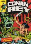 Cover for Conan Rey (Planeta DeAgostini, 1984 series) #16