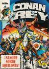 Cover for Conan Rey (Planeta DeAgostini, 1984 series) #17